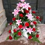 Mammas_iphone_046